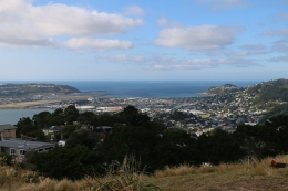 Atop Mount Victoria, looking down on Wellington