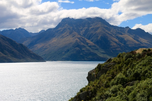 Overlooking Lake Wakatipu